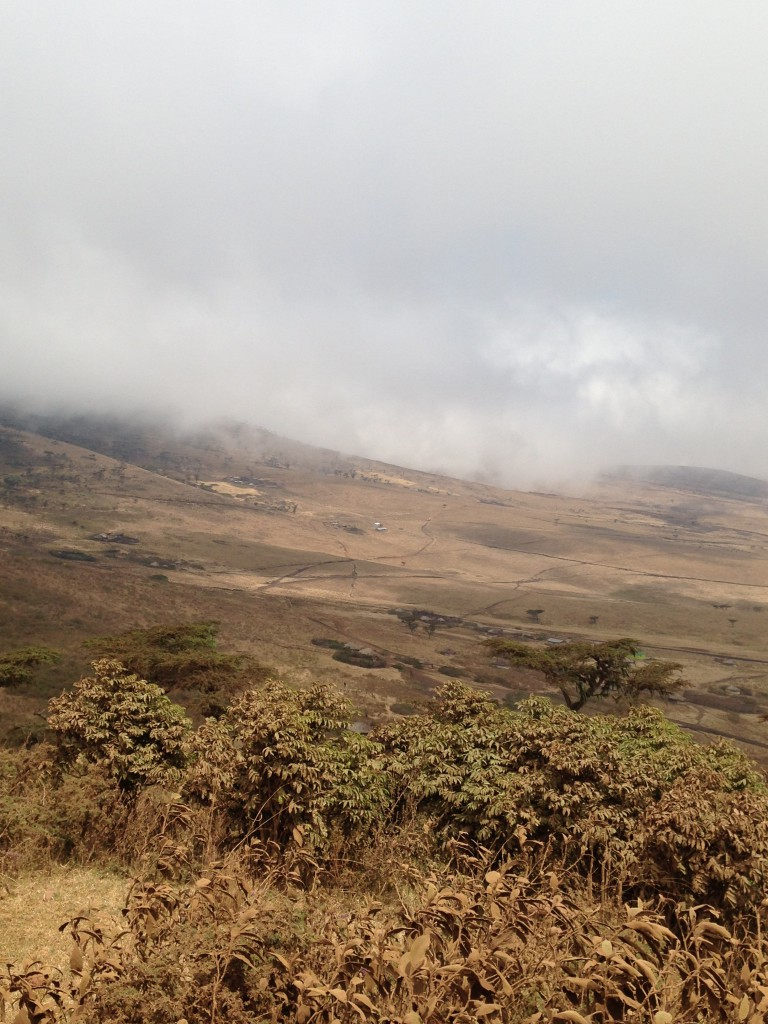 ngorongoro-2