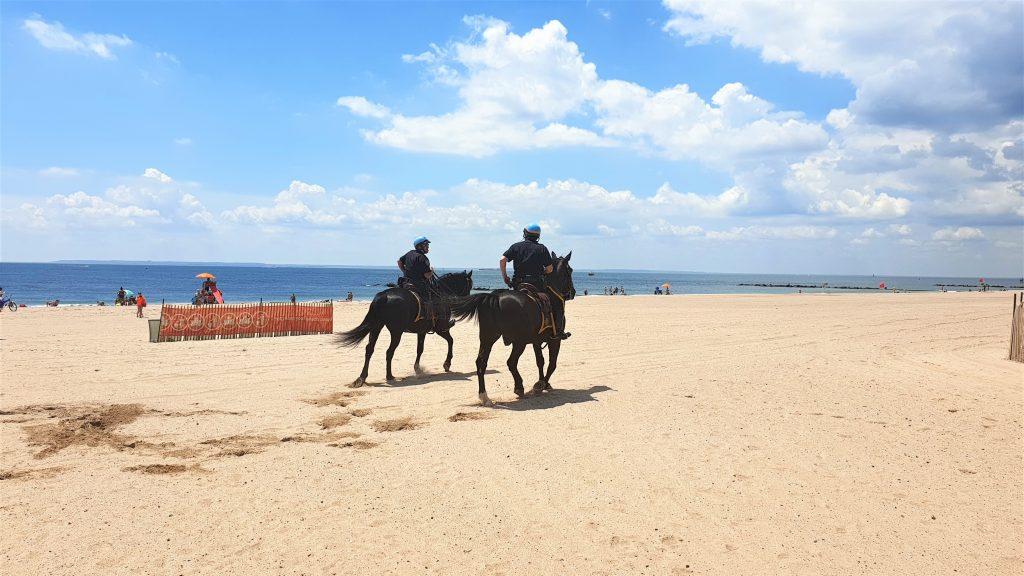 coney island beach police horse