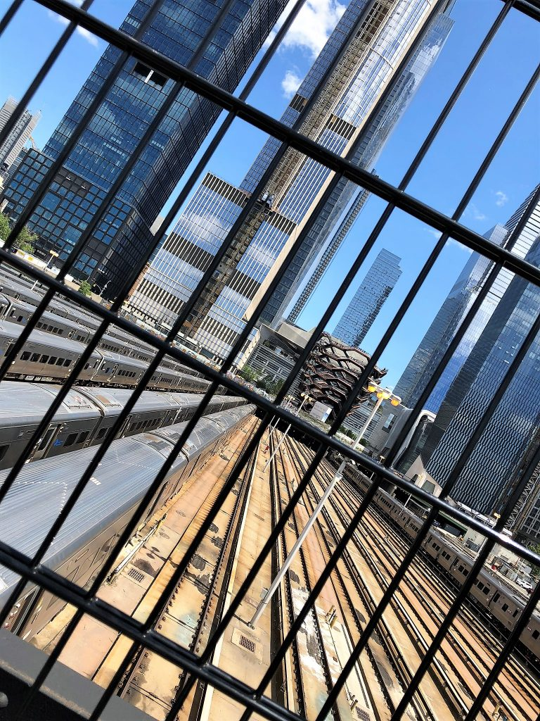 high line vessel view